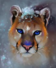 Картинка Большие кошки Пумы Рисованные Крупным планом Морды Усы Вибриссы Смотрят Животные
