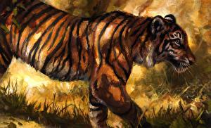 Фотография Большие кошки Тигры Рисованные
