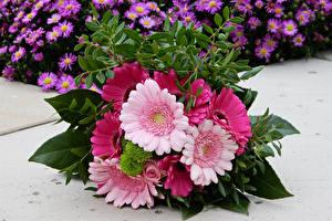 Обои Букеты Герберы Доски Цветы