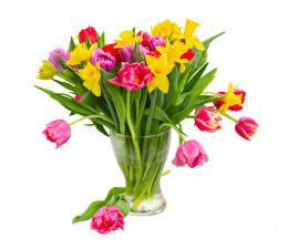 Картинки Букеты Тюльпаны Нарциссы Белый фон Ваза Цветы