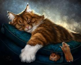 Фото Коты Рисованные Хомяки Спящий Лапы Отдых Животные