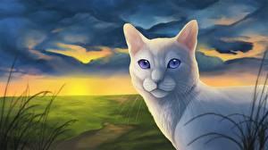 Фотографии Кошки Рисованные Белый Животные