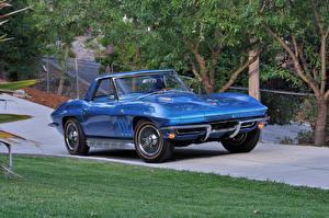 Обои Шевроле Ретро Голубой Металлик 1965 Corvette Sting Ray L78 396-425 HP Convertible