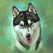 Картинка Собака Рисованные Вблизи Голова Хаски Язык (анатомия) Siberian Животные