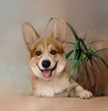 Картинки Собаки Рисованные Вельш-корги животное