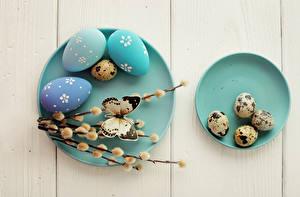 Фото Пасха Праздники Бабочки Доски Яйца Ветвь Тарелка