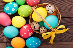 Фото Пасха Праздники Яйца Корзинка Бантик