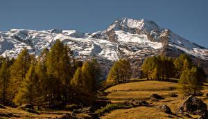 Фотография Франция Горы Осень Камень Деревья Le Monal