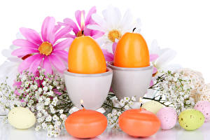 Обои Праздники Пасха Свечи Космея Яйца Ветки