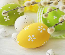 Обои Праздники Пасха Яйца Ветвь