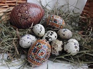 Обои Праздники Пасха Яйца Солома