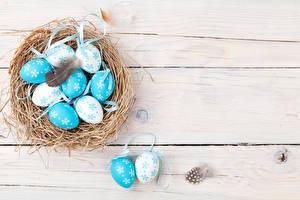Фотография Праздники Пасха Перья Доски Яйца Гнездо