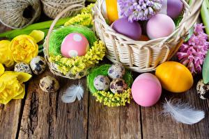 Картинка Праздники Пасха Гиацинты Мимозы Перья Доски Яйца Корзинка