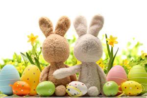 Обои Праздники Пасха Кролики Белый фон Яйца Двое
