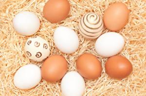 Фотография Праздники Пасха Солома Яйца