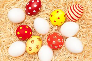 Фотографии Праздники Пасха Солома Яйца