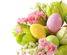 Фотографии Праздники Пасха Тюльпаны Ландыши Белый фон Яйца Цветы