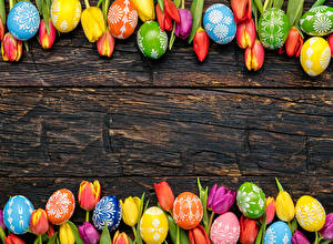 Фото Праздники Пасха Тюльпаны Доски Яйца Шаблон поздравительной открытки