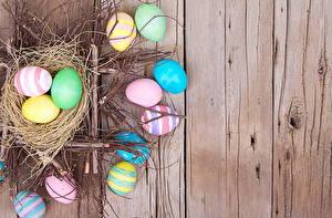 Картинка Праздники Пасха Доски Яйца Гнездо