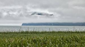 Картинка Камчатка Россия Реки Трава Туман Природа