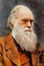 Фотографии Мужчины Рисованные Борода Charles Darwin Знаменитости