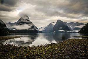 Фотография Горы Побережье Новая Зеландия Фьорд Milford Sound Fjord Природа