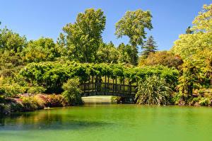 Картинка Новая Зеландия Парки Пруд Мосты Кусты Kuirau Park Rotorua