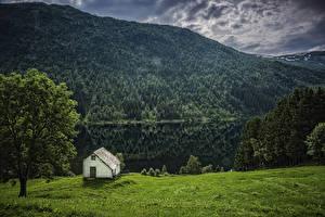 Фотографии Норвегия Горы Реки Дома Леса Деревья Flisram Hordaland
