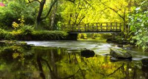 Фото Шотландия Реки Мосты Камни Мох River Forth