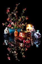 Фотографии Натюрморт Напитки Свечи Черный фон Чашка Отражение Chaenomeles japonica Продукты питания
