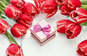 Обои Тюльпаны Вблизи Доски Красный Подарки Цветы