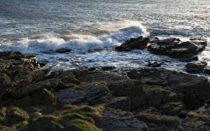 Фотография Великобритания Побережье Волны Камень Мох Anglesey