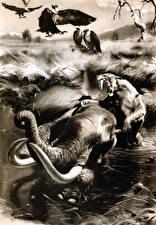 Обои Зденек Буриан Грифы Древние животные Черно белое Smilodon