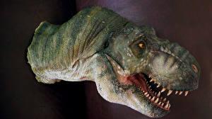 Картинки Древние животные Динозавры Тираннозавр рекс Голова