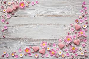 Картинка Маргаритка Розы Доски Шаблон поздравительной открытки Сердечко Лепестки Цветы