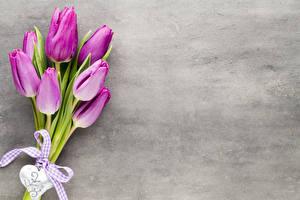 Фотография Букеты Тюльпаны Сердечко Бантики Фиолетовый Цветы