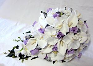 Картинка Белокрыльник Розы Орхидеи