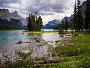 Обои Канада Парк Горы Озеро Камни Пейзаж Джаспер парк Деревья Траве