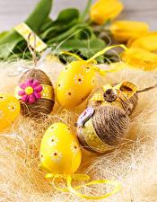 Фотография Пасха Праздники Яйца Солома