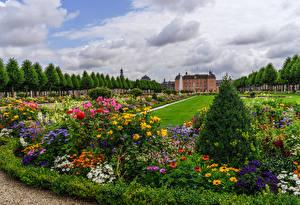 Фотография Германия Замки Парки Газон Кусты Schlossgarten Schwetzingen Природа