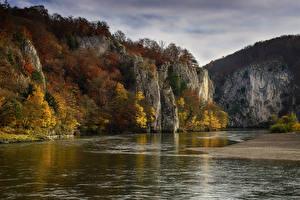 Фотография Германия Реки Осенние Бавария Утес Деревья Kelheim