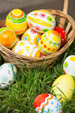 Фотография Праздники Пасха Яйца Трава Корзина