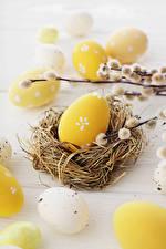 Обои Праздники Пасха Яйца Гнездо Ветки
