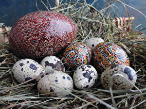 Картинки Праздники Пасха Яйца Солома