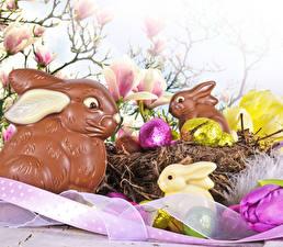 Обои Праздники Пасха Кролики Шоколад Яйца Гнездо Пища