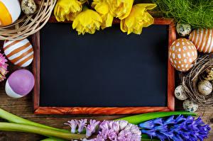 Фото Праздники Пасха Шаблон поздравительной открытки Яйца