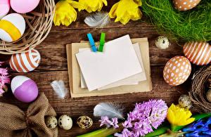 Фото Праздники Пасха Доски Шаблон поздравительной открытки Яйца