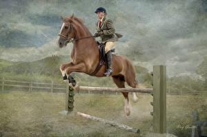 Картинка Лошадь Верховая езда Мужчина Прыжок спортивный
