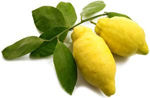 Фотография Лимоны Листья Ветка Белый фон Пища