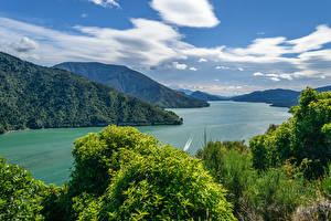 Фотография Новая Зеландия Пейзаж Гора Речка Кустов Облачно Cullen Point Lookout Havelock Природа